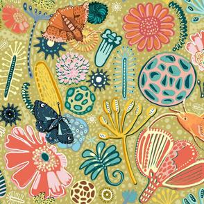 Microscopic Pollen Patterns.
