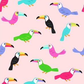 Toucans // Dusty Rose
