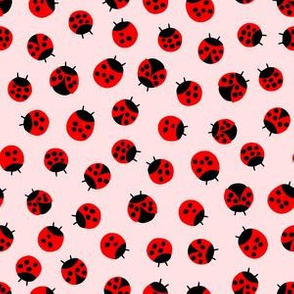 Litlle Lady bugs // Dusty Rose