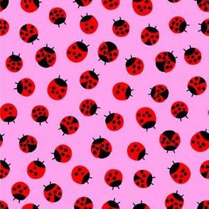 Litlle Lady bugs // Bubblegum Pink