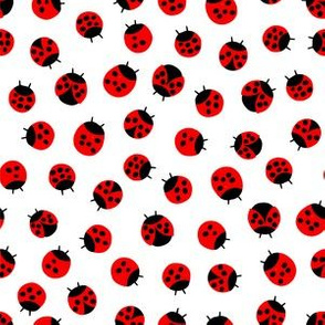 Litlle Lady bugs // Classic