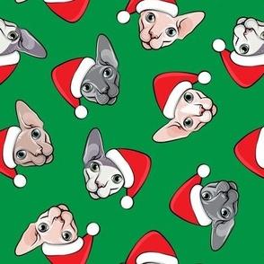 Santa Sphynx - green - hairless cat - LAD19