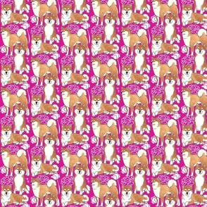 Sassy little B (hot pink)