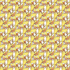 Tiny Breezeley poses (yellow)