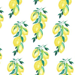 Lemon Branch White