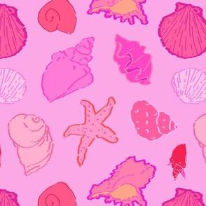 Simply Seashells Toss in Tonal Pink