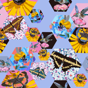 Lilac love pollinators