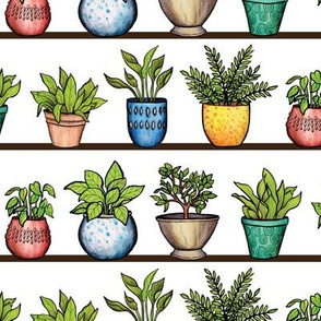 Houseplants Pattern - Colorful Potted Plants On Shelves