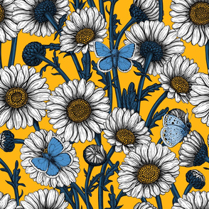 Daisies and common blues on yellow
