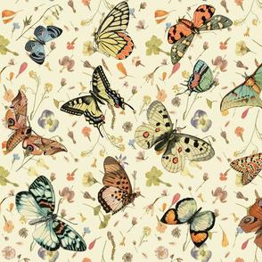 Wildflowers w Butterflies