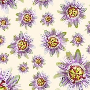 19-07x Passion Fruit Cream Off white Passionfruit Floral Flower