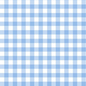 Bright Light Blue Gingham