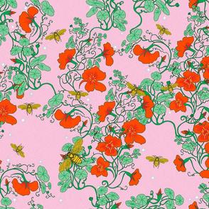 Bees in Nasturtiums  Pink