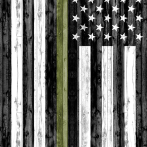 3 yard minky panel - American Flag (no border) - Thin Green Line C19BS
