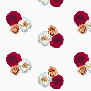 red rose sky 2
