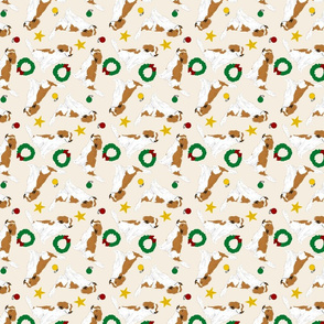 Tiny Kooikerhondje - Christmas