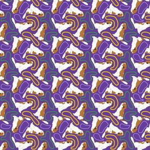 Tiny Kooikerhondje - Mardi Gras