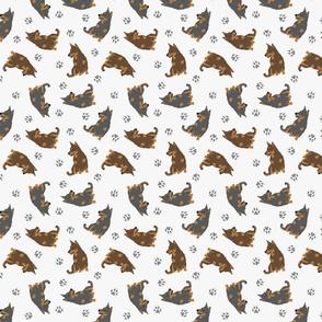 Tiny Lancashire Heelers - gray