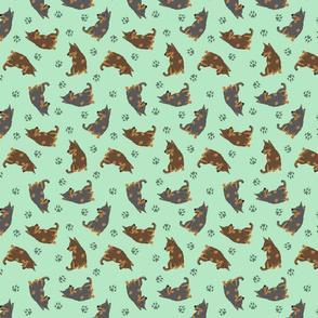 Tiny Lancashire Heelers - green