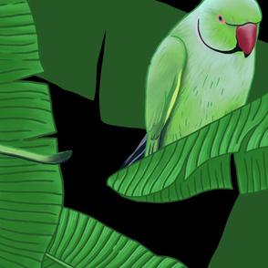 Tropical Green Parrot Birds on Banana Trees - Black Large