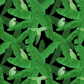 Tropical Parrots within Banana Leaves - Black Small