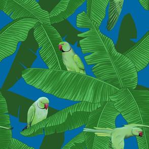 Tropical Parrots Birds within Banana Trees - Blue Medium Size