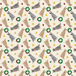 Tiny Australian cattle dogs - Christmas
