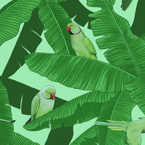 Tropical Green Parrots on Banana Leaves - Light Green Medium Size