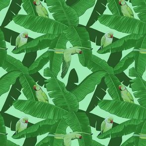 Tropical Green Parrot Birds on Banana Leaves - Light Green Smallest