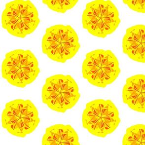Funky Flowers - Wattle it be, Yellow Flower