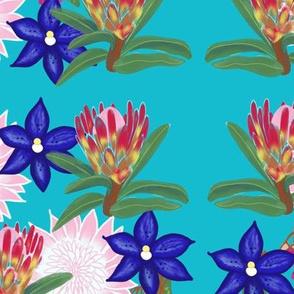 Aussie Flora