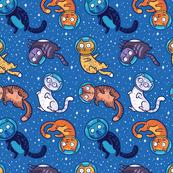 Galaxy cats_3
