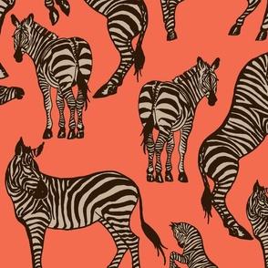 Zebras Brown Coral