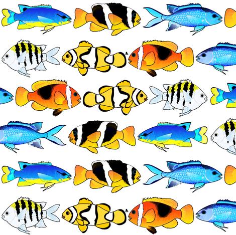 6 Colorful Tropical Damselfish fabric by combatfish on Spoonflower - custom fabric