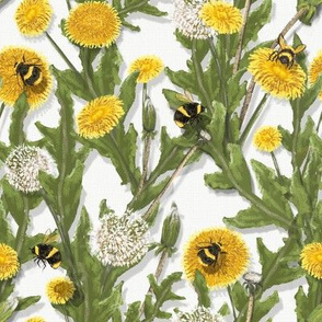 Dandelions on White//Widdle Bitty Bees