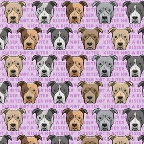 "(1.25"" scale) kisser not a biter - pit bulls on purple C19BS"