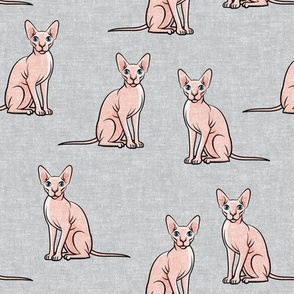 Sphynx Cats - Hairless Cats Sitting -  Grey - LAD19