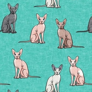 Sphynx Cats - Hairless Cats Sitting -  Teal - LAD19