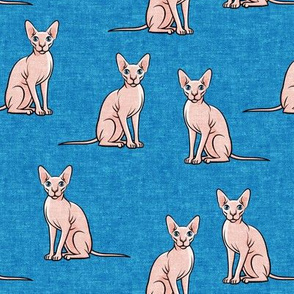 Sphynx Cats - Hairless Cats Sitting -  Blue - LAD19