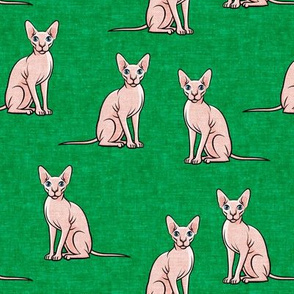 Sphynx Cats - Hairless Cats Sitting -  Green - LAD19