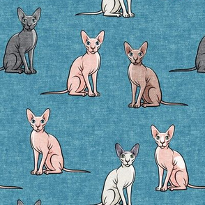 Sphynx Cats - Hairless Cats Sitting -  Multi Blue 2- LAD19
