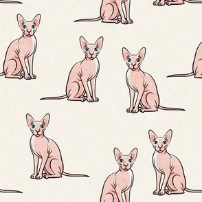 Sphynx Cats - Hairless Cats Sitting -  Cream - LAD19