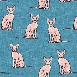Sphynx Cats - Hairless Cats Sitting -  Blue 2 - LAD19