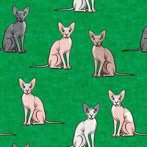Sphynx Cats - Hairless Cats Sitting -  Multi Green - LAD19