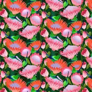 malachite sunbirds