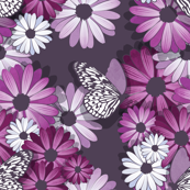 African Daisy Spring Floral // violet