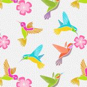 Hummingbirds in Flight - Grey
