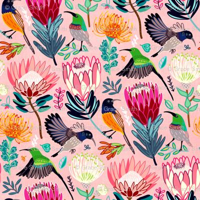 Sunbirds & Proteas (Large Version)