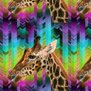 GIRAFFE ON PSYCHEDELIC ARROWS CHEVRONS RAINBOW MULTICOLOR PSMGE