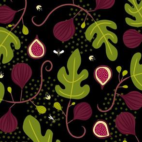 Figs & Wasps